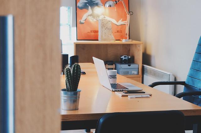 kaktus, notebook, židle, kancelář
